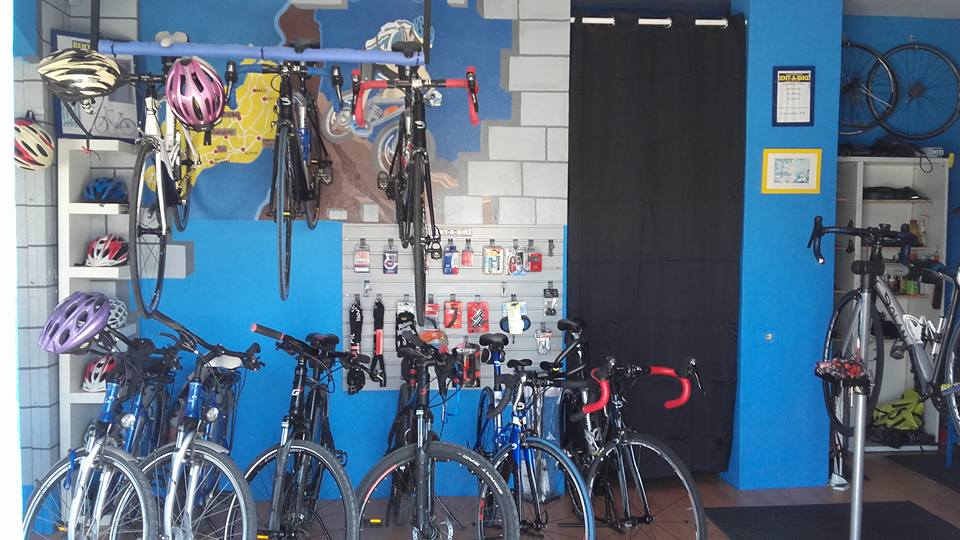 Roys Bike Shop Interior